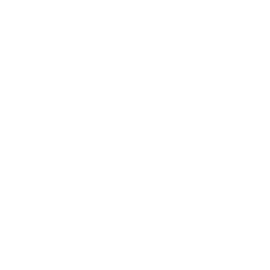 Notes Alfons Mucha – Poezie, linkovaný, 13 × 21 cm